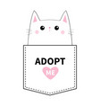 kitten sitting in the pocket adopt me pink heart vector image vector image