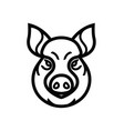Linear image of swine or pig head vector image