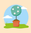 plants decoration gardening flat design vector image vector image