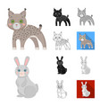 toy animals cartoonblackflatmonochromeoutline vector image vector image