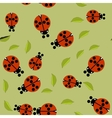 Beetle insect seamless pattern 674 vector image vector image