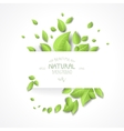 Eco background with fresh green leaves vector image