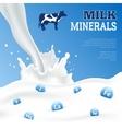 Milk Minerals Poster vector image vector image