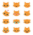 set of cute cartoon cat emotions vector image
