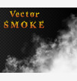 thick strong smoke from fire or conflagration vector image vector image