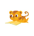 tiger reading book on white background vector image vector image