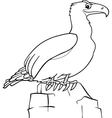 cartoon eagle for coloring book vector image