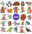comic wild animal characters large set vector image vector image