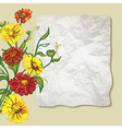 flowers and paper vector image