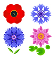 Set of flowers tulip lotus cornflower isolated vector image