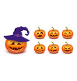 set pumpkin on white background main symbol vector image