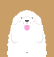 cute big fat white Poodle dog vector image vector image