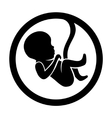Fetus Icon Isolated on White Background vector image vector image
