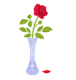 Roses-in-a-vase vector image
