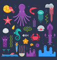 sea invertebrates and exotic underwater creatures vector image
