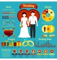 Set of wedding infographics and elements for vector image vector image