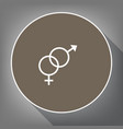 sex symbol sign white icon on brown vector image vector image