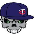 Skull baseball cap vector image