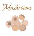 tasty veggies mushrooms vector image vector image
