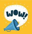 wow message into speech bubble megaphone vector image vector image