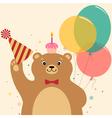 Birthday surprise vector image