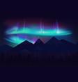 beautiful northern lights aurora borealis vector image vector image