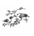 Black and white watercolor of bird on vector image