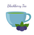 blackberry tea in cup with berries vector image vector image