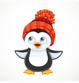 cute cartoon baby penguin in warm knitted hat vector image vector image