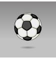Football Ball on Light Background vector image