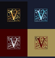 letter v decorative logo vector image vector image