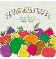 set of organic fruits vector image vector image