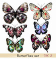 set realistic butterflies for design vector image vector image