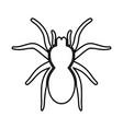 spider or tarantula black icon vector image vector image