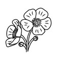 buttercup flower floral hand drawn design sign vector image vector image