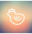 Chick thin line icon vector image vector image