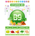 folic acid vitamin b9 rich food icons healthy vector image vector image