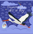 stork carrying a cute baby in a bag this is a boy vector image