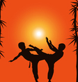 Two boys demonstrate karate on a background a sun vector image vector image