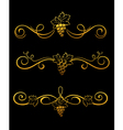 golden grape borders vector image