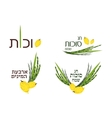 collection of labels and elements for Sukkot vector image vector image