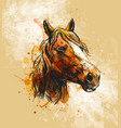 colored hand sketch horse head vector image vector image