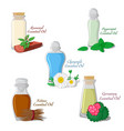 essential oils part 2 vector image vector image