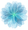 Floral round pattern of blue flower petals vector image vector image