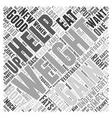How To Put Weight Gain On Women Word Cloud Concept vector image vector image