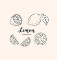 lemon fruit drawing sketch lemons on a white vector image