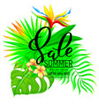summer sale composition with flowers and leaves vector image vector image