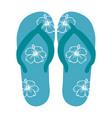 beach flip-flops vector image vector image