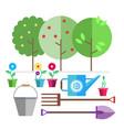 garden fruit trees seedlings flowers in pots vector image vector image