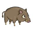 hog friendly cute forest animal cartoon vector image vector image